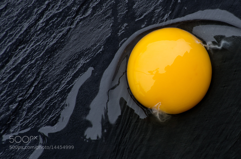 Photograph Egg by Adrian Mills on 500px