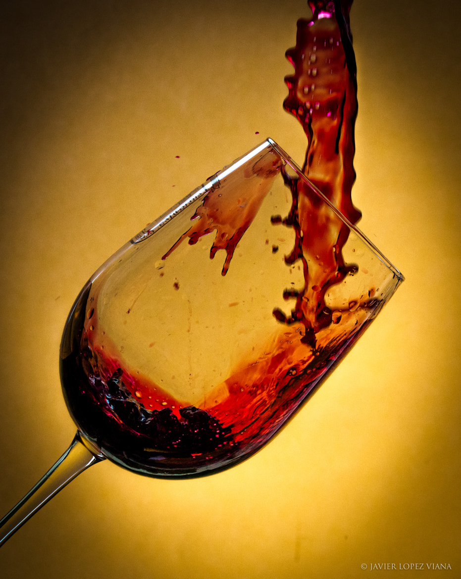 Photograph Glass of Wine by Javier Lopez on 500px