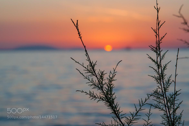 Photograph Setting sun by Panos Klaoudatos on 500px
