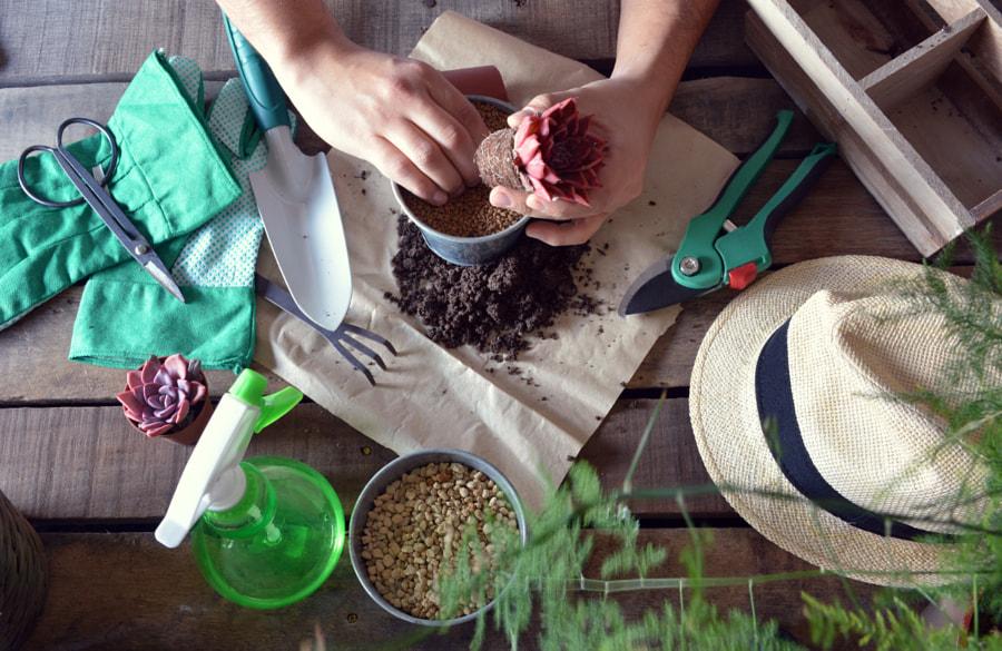 gardener doing gardening work by Luis Mario Hernandez Aldana on 500px.com