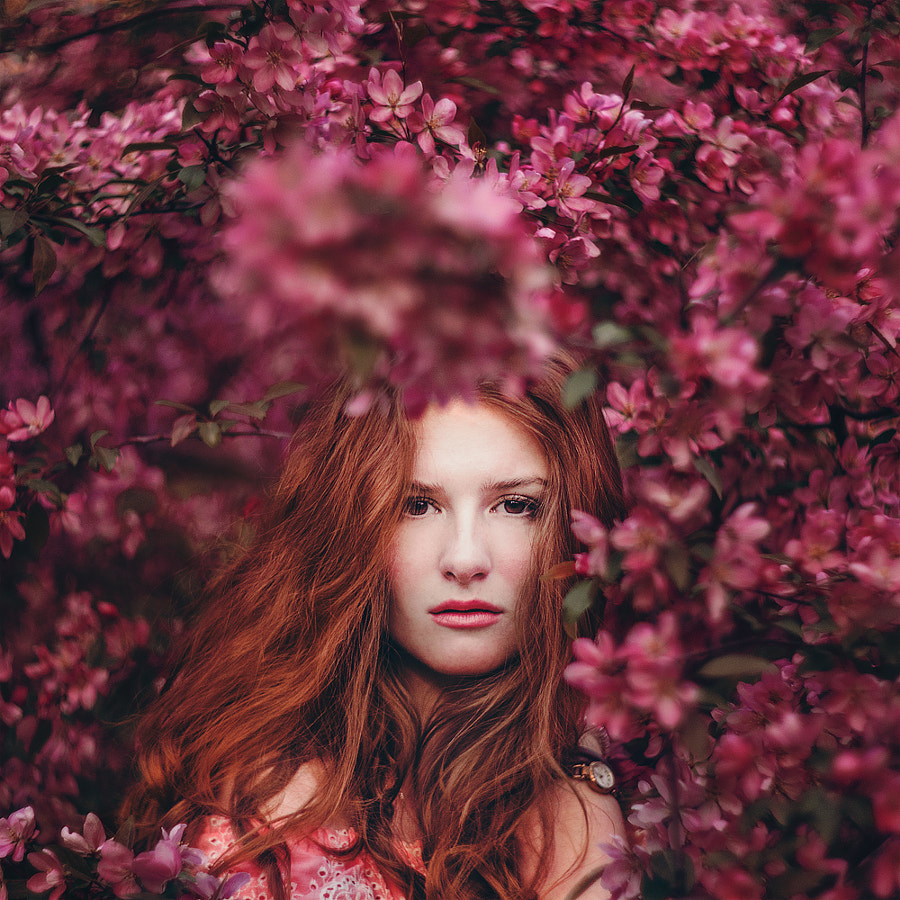 Blossom by Kristina Makeeva on 500px.com
