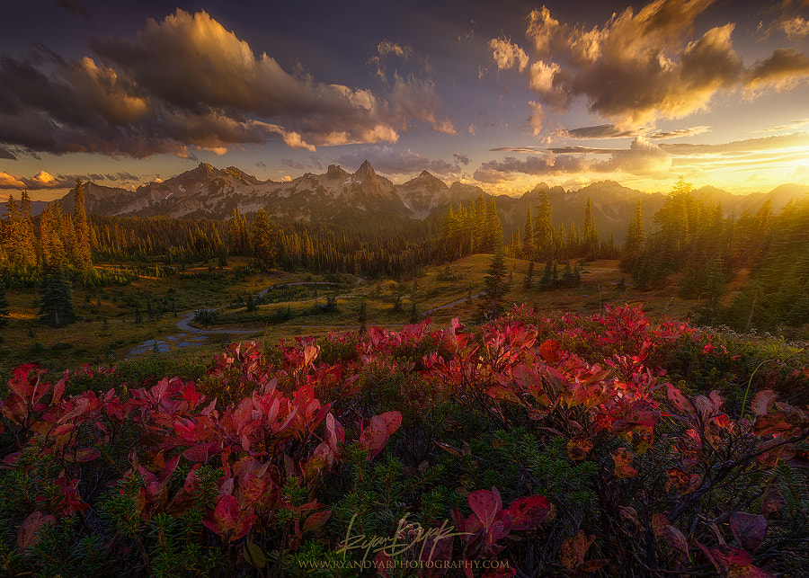The Window Scenic by Ryan Dyar on 500px.com