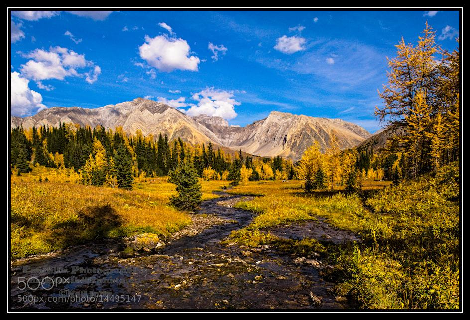 Photograph Pocaterra Cirque in Fall Clothes by Neil Jolly on 500px