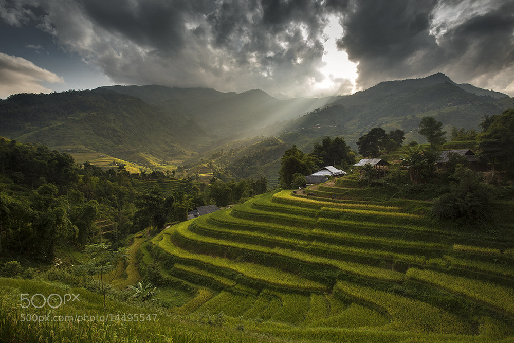 Photograph Hoang Su Phi by Viet Hung on 500px