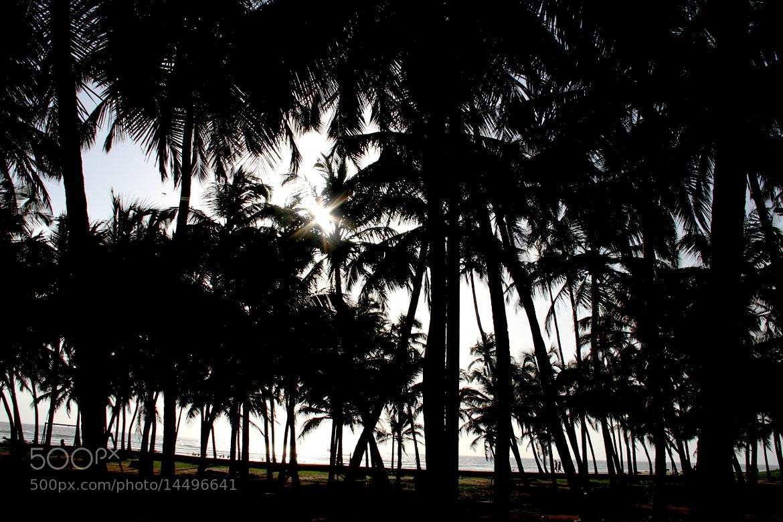 Photograph Into the Dark by Sudeep Devkota on 500px