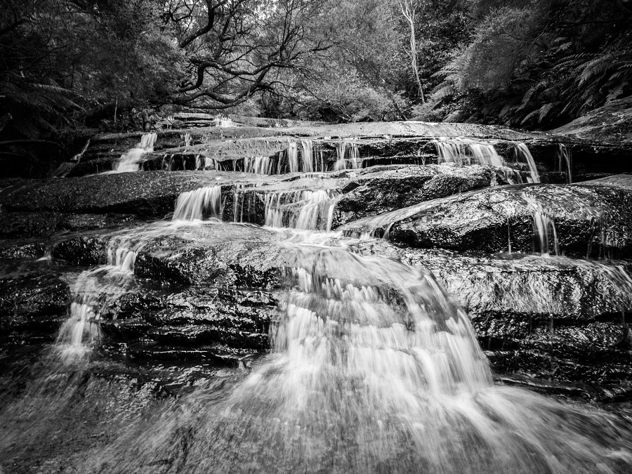 Leura Cascade Blue Mountains by Travis Chau on 500px.com