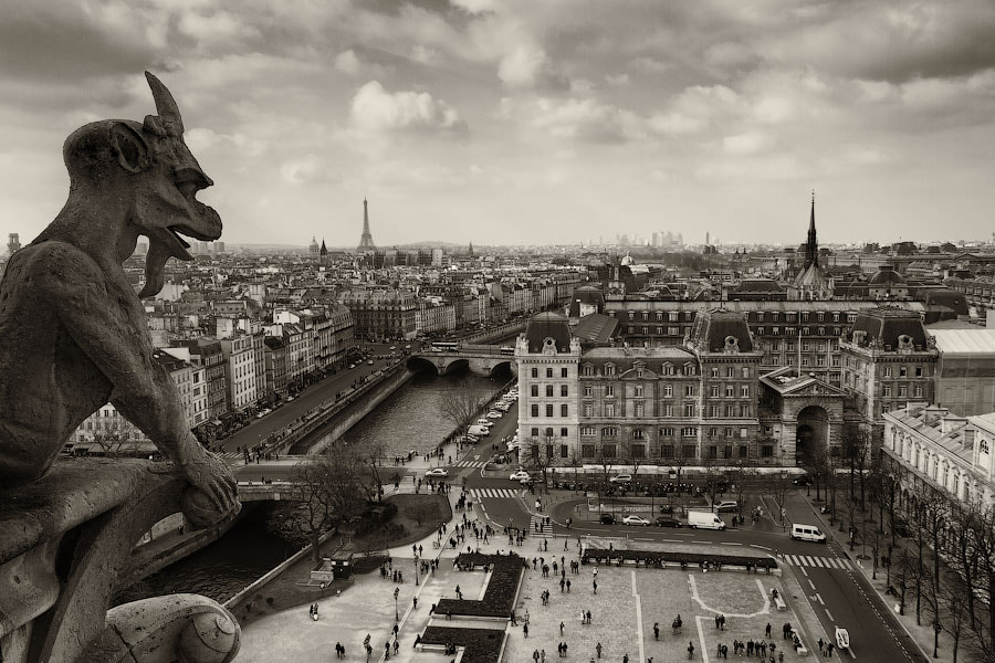 Photograph Gargoyles of Notre Dame by Alexander Dragunov on 500px