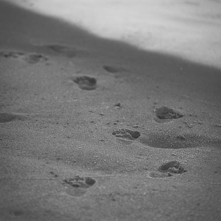 Little tracks.