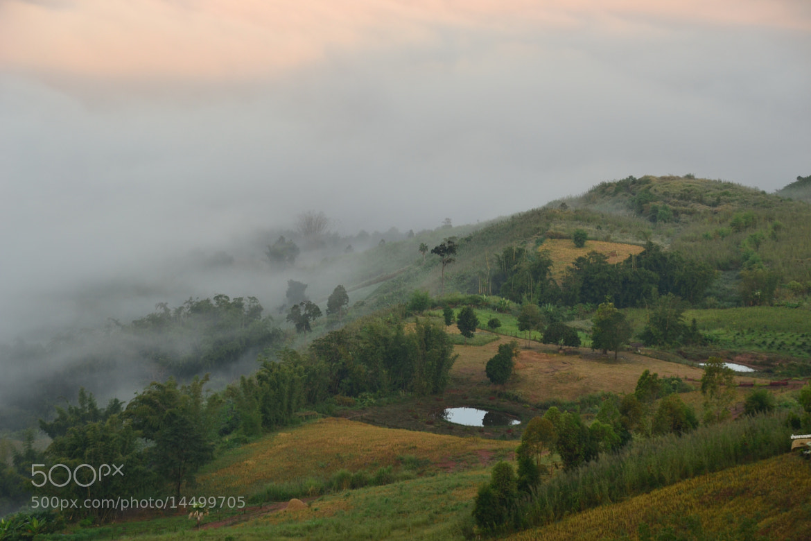 Photograph Sea fog at Khao Kho in Thailand by Sirinun Kaewchampa on 500px