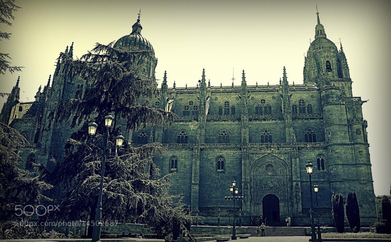 Photograph Salamanca by Raquel Camurasiquel on 500px