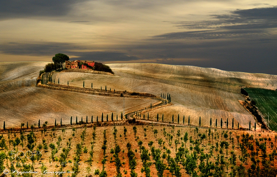 Photograph Land of Tuscany ♦ by Giuseppe  Peppoloni on 500px