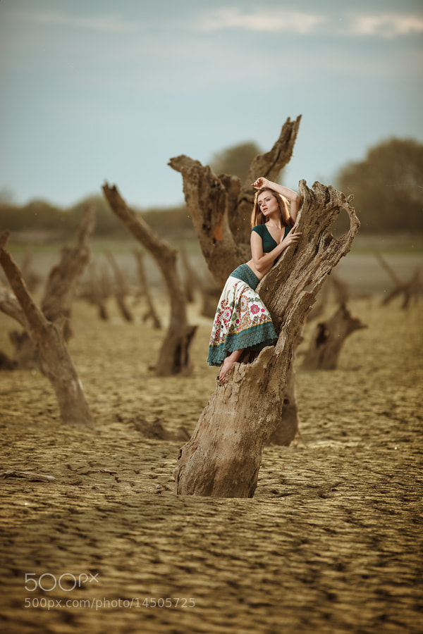 Photograph Dry weather by Vitaliy Timkiv on 500px