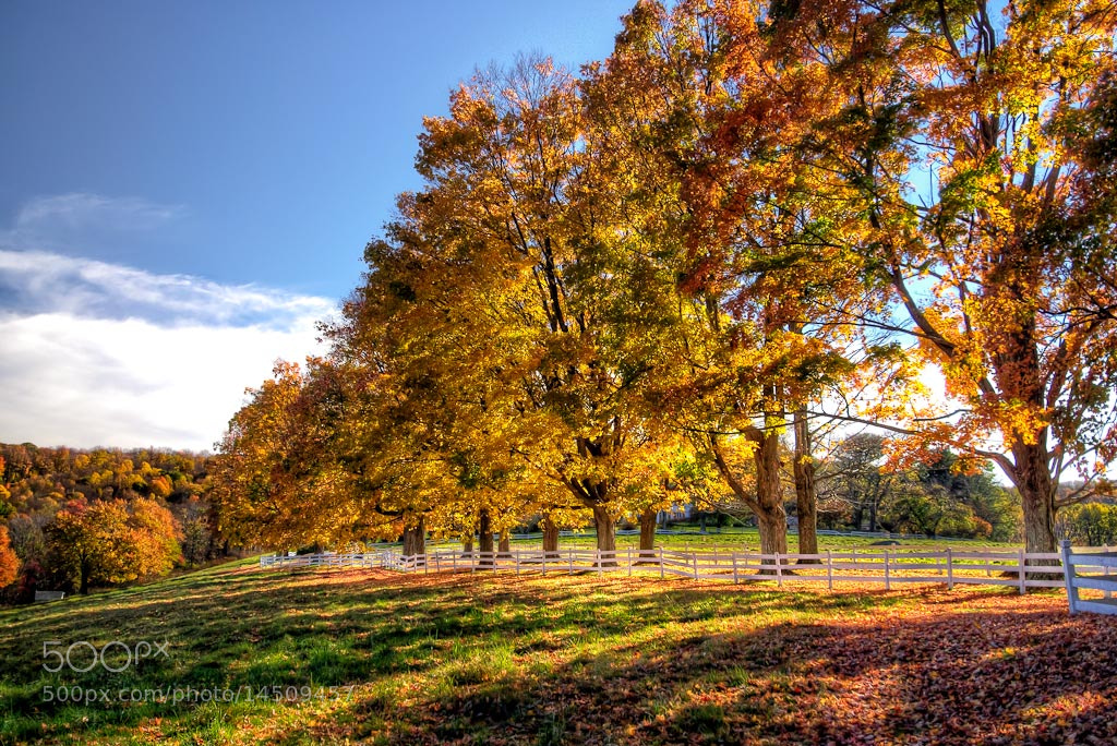 Photograph Foliage in New England by Len Saltiel on 500px