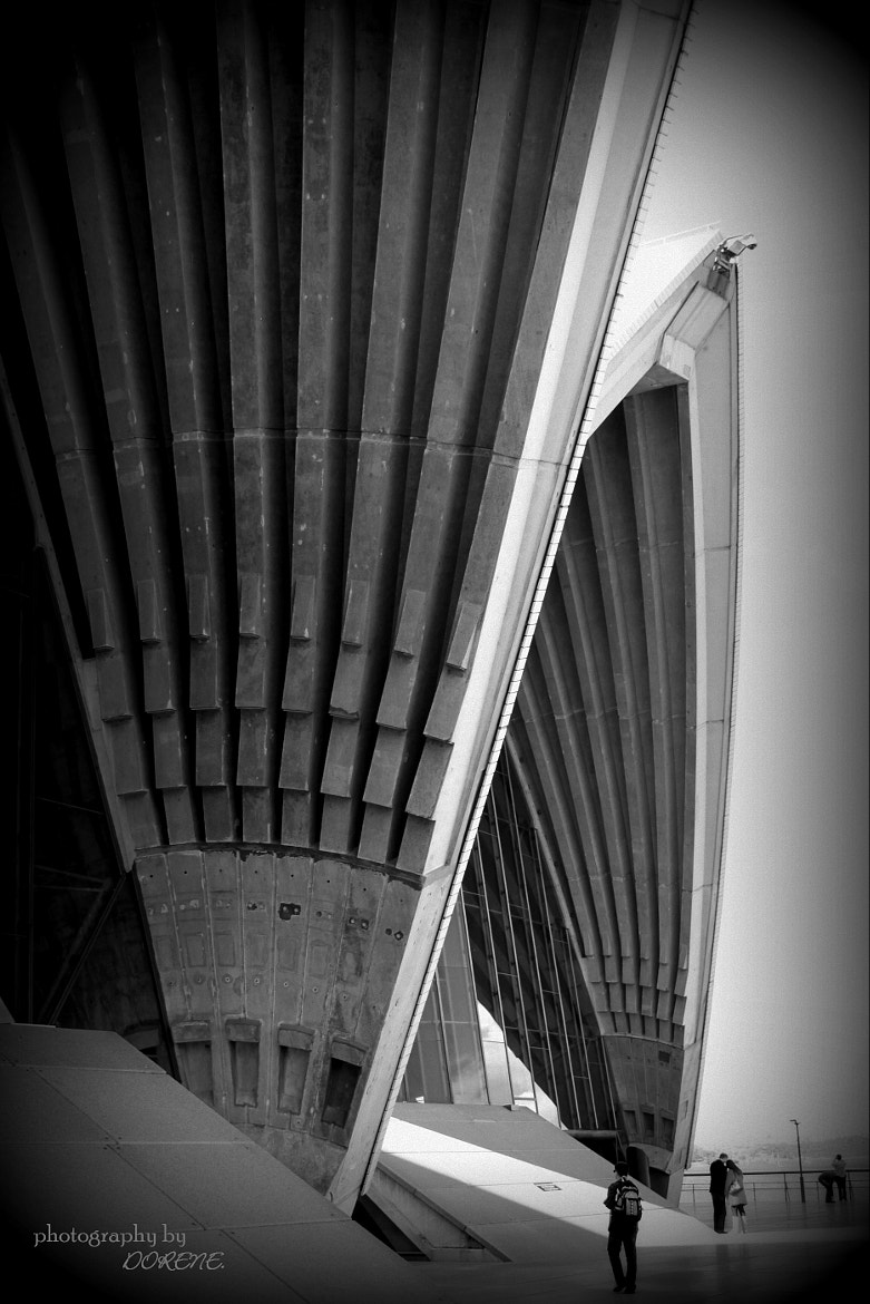Photograph Sydney Opera House by Photography by Dorene. on 500px