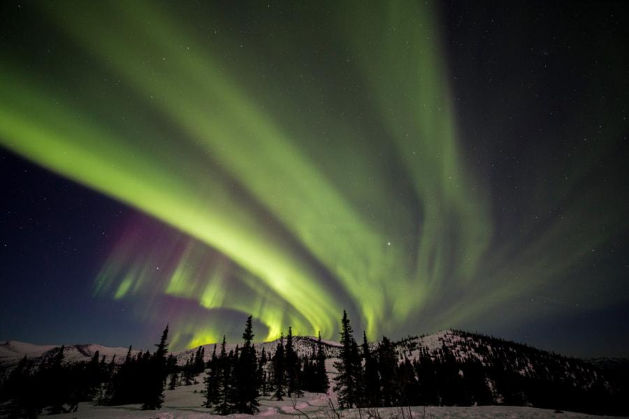 Aurora in Alaska by Darren Lin on 500px.com