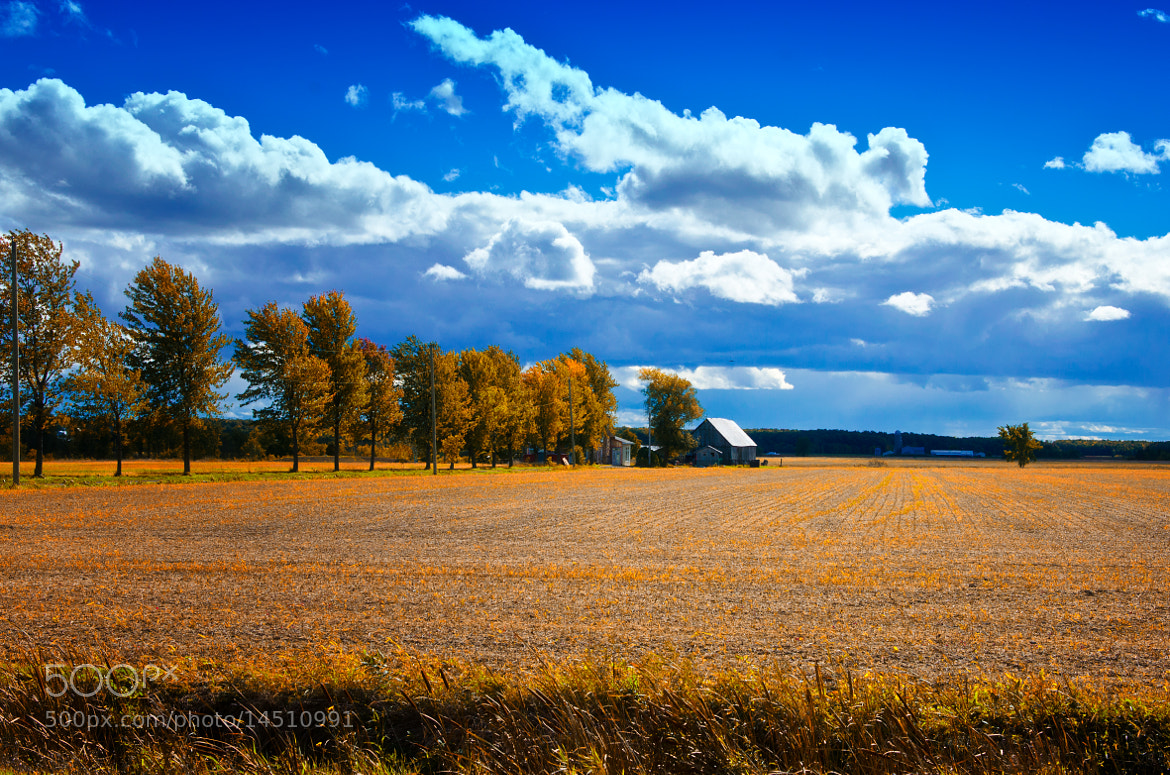 Photograph Freshly Cut Field by Chris Lockwood on 500px