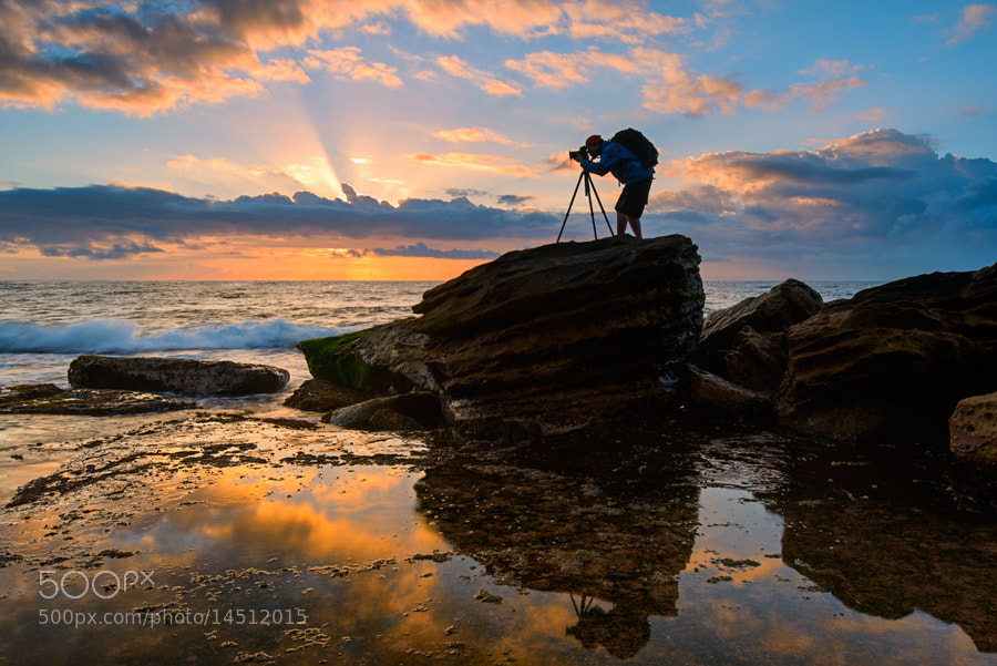 Photograph D800e : First impression by AtomicZen : ) on 500px