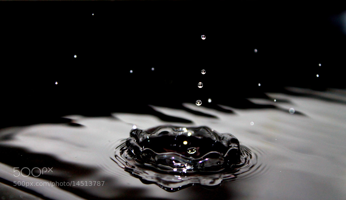Photograph Water drops by Indre Krasauskaite on 500px