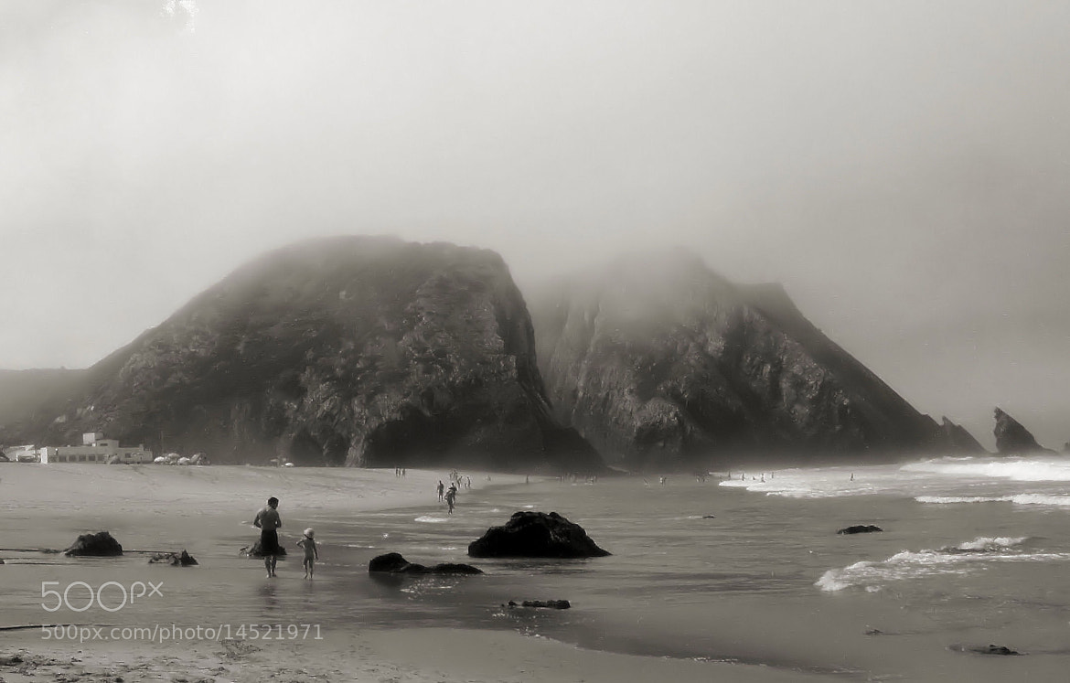 Photograph Tell me more fog stories by Analua Zoé on 500px