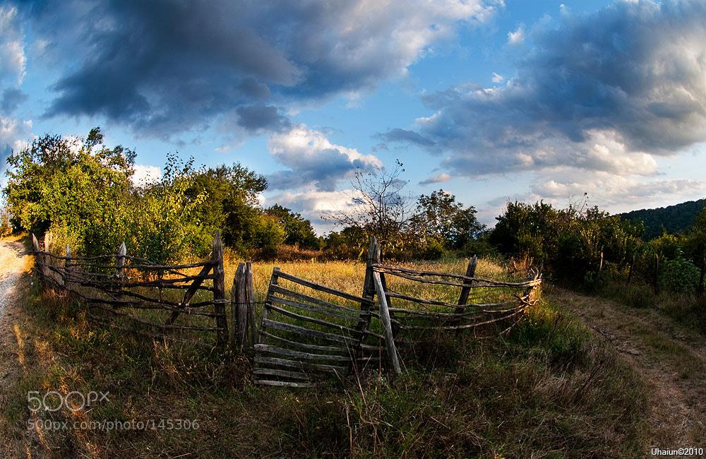 Photograph Evening by Vladimir Popov / Uhaiun on 500px