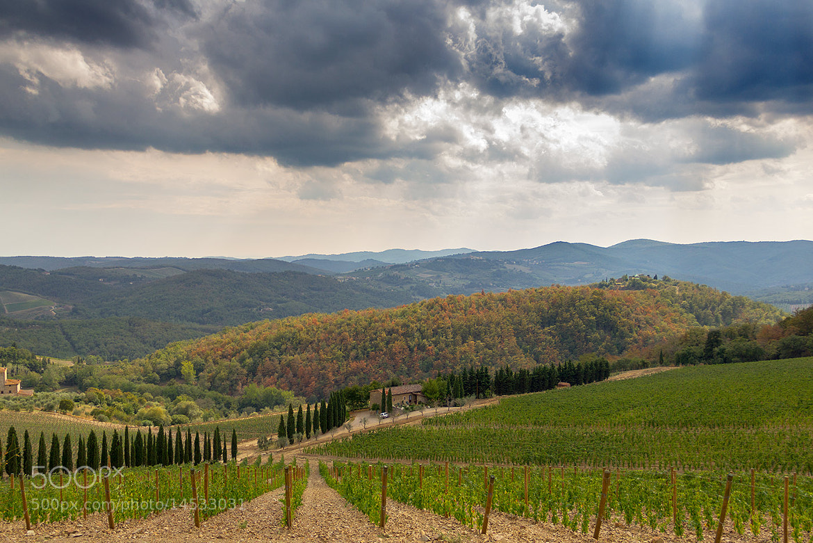 Photograph Tuscany. by Valerij D. on 500px