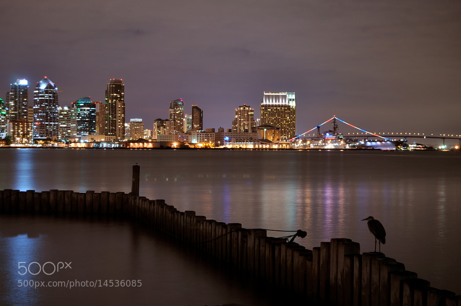 A beautiful look at the San Diego's Skyline.