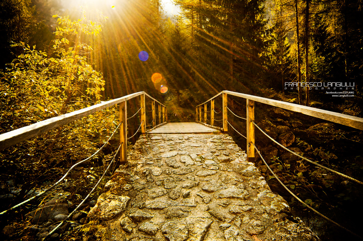 Photograph The right way by Francesco Langiulli on 500px