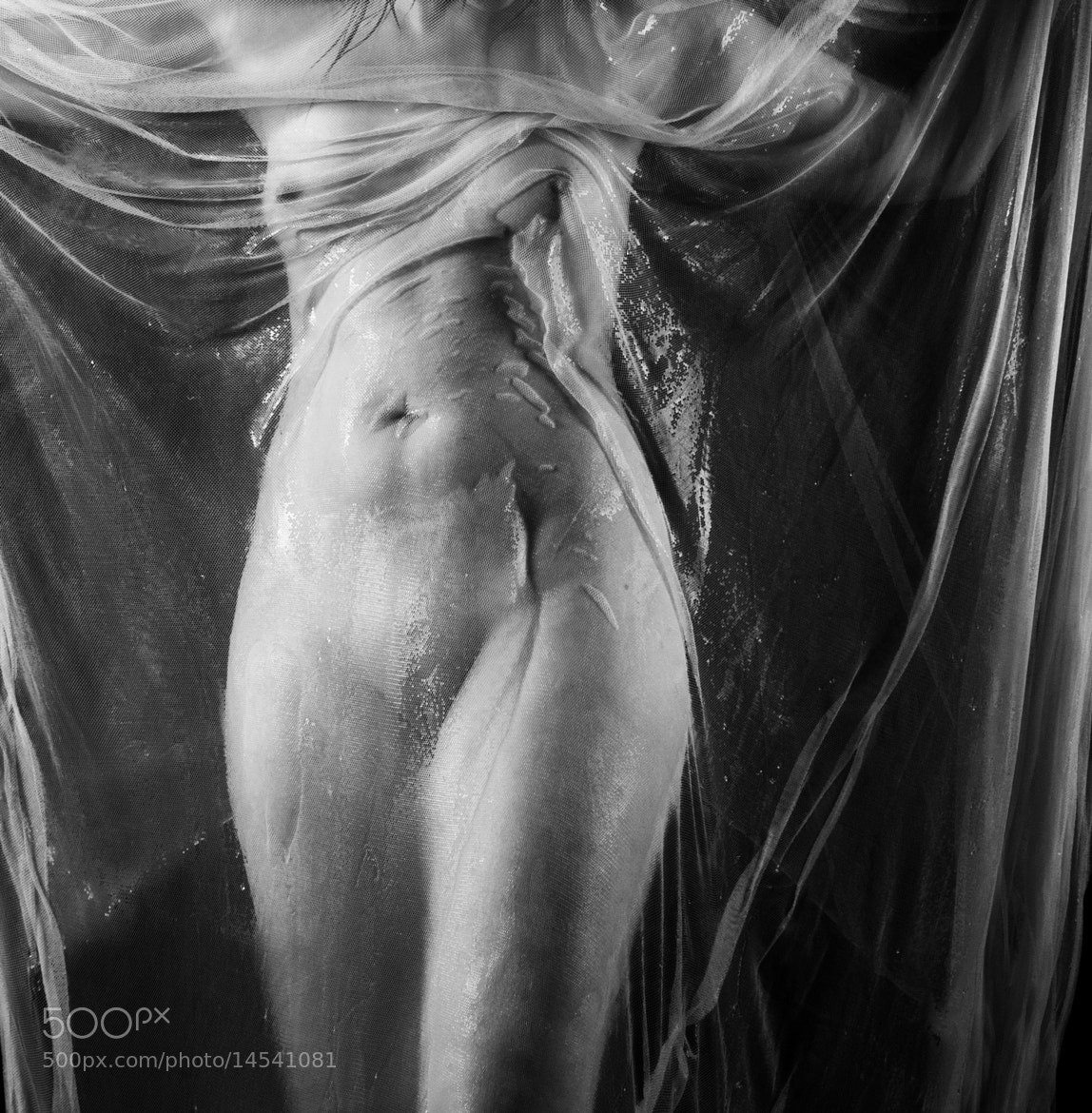 Photograph Torso by Csilla Zelko on 500px