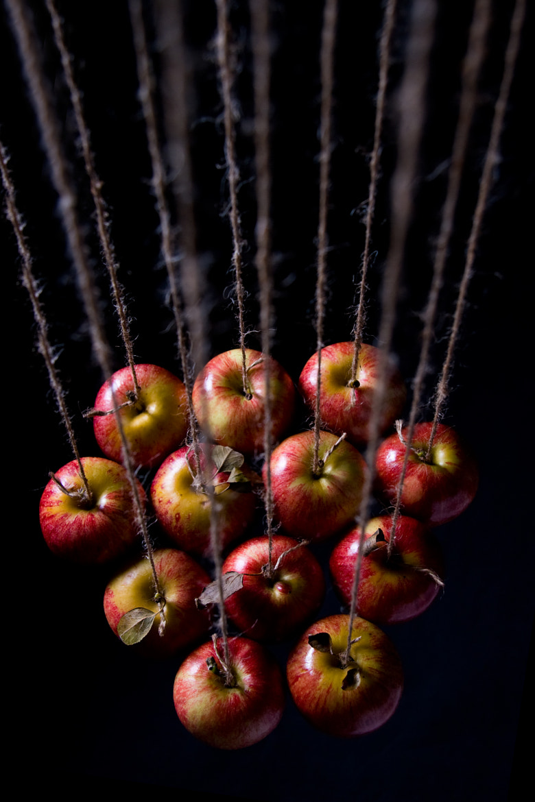 Photograph The 12 Apples by Geoff Powell on 500px