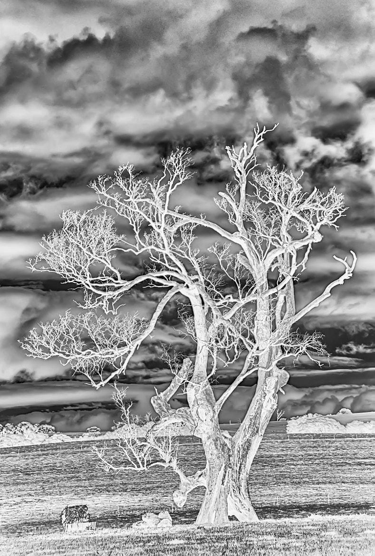 Photograph Negative space by Pieter Pretorius on 500px
