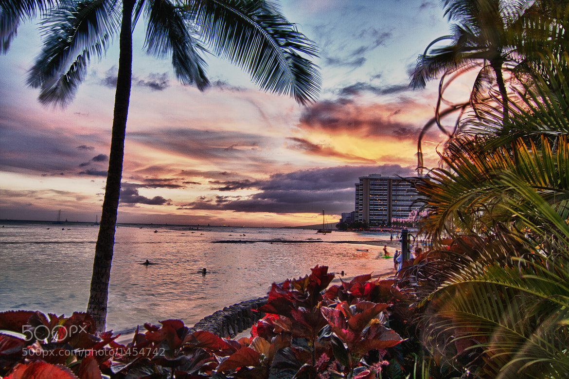 Photograph Waikiki Sunset by David Edenfield on 500px