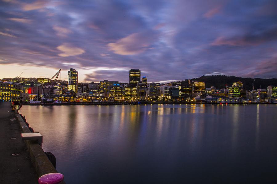 Wellington skyline by night by Hartmut Albert on 500px.com