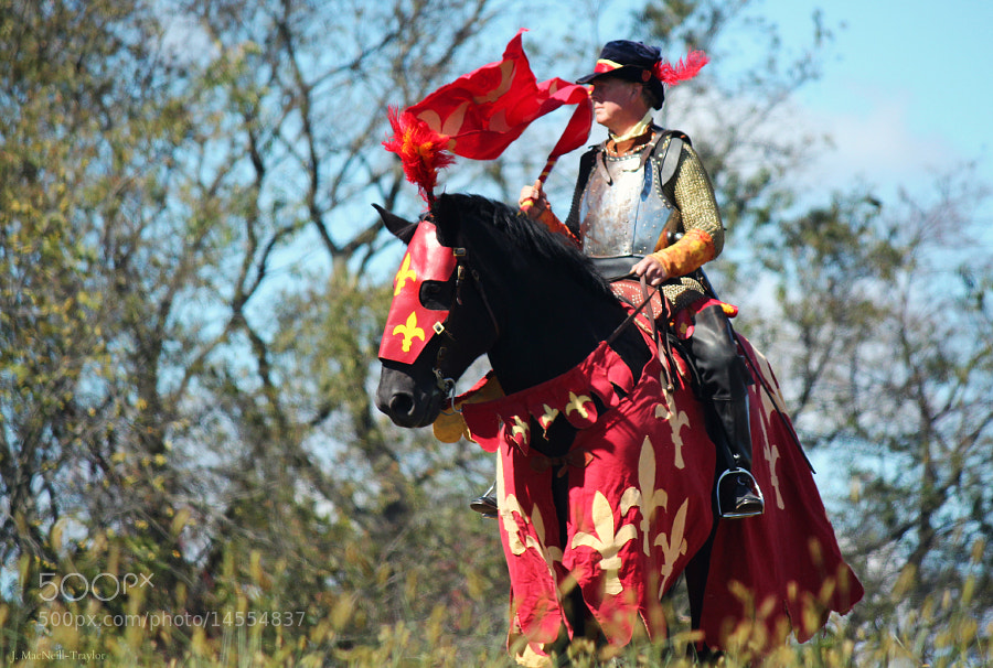 Photograph red knight by Jennifer MacNeill Traylor on 500px