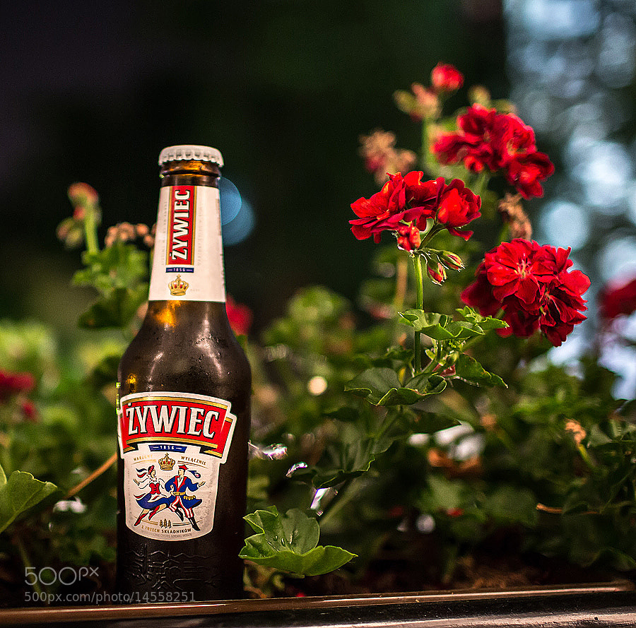 Photograph Zywiec by Ove Bjerknes on 500px