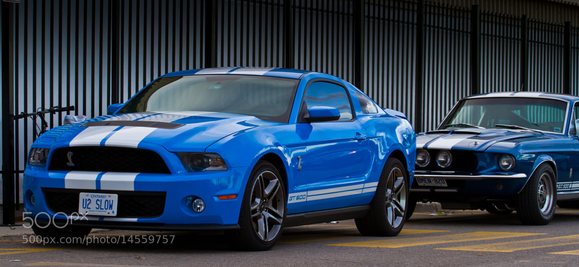 Photograph Which GT 500? Old or New by Greg David on 500px