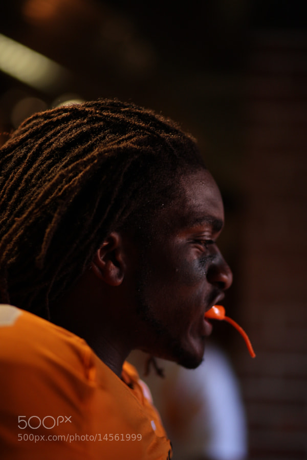 Knoxville, TN - Photo Taken during the SEC matchup between the University of Tennessee Volunteers and the Florida Gators. Photo By Matthew DeMaria - msdphoto.com