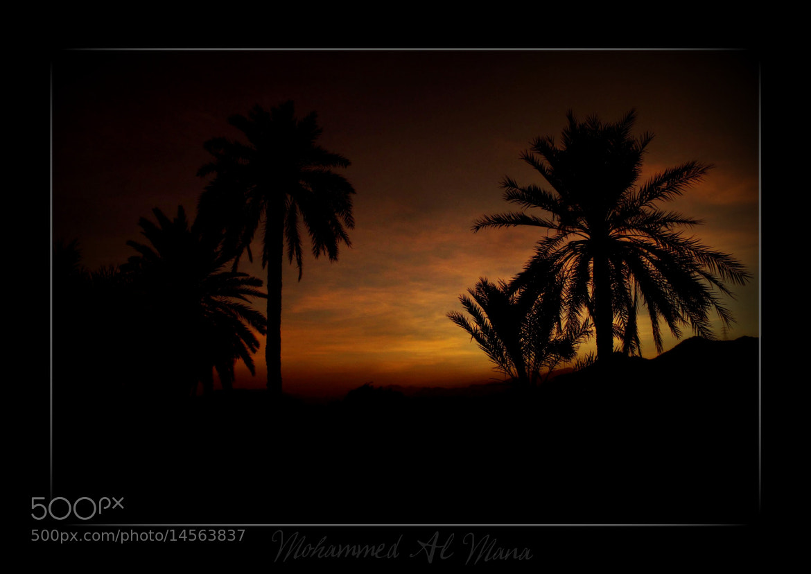 Photograph Sunset by salata2009 on 500px