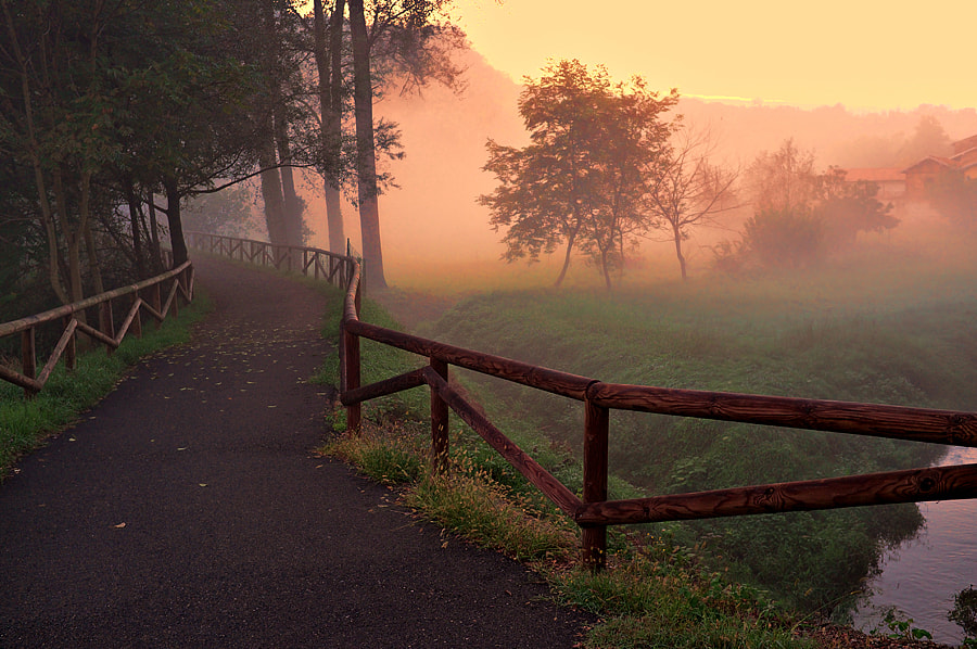 Photograph Foggy evening by Michele Galante on 500px