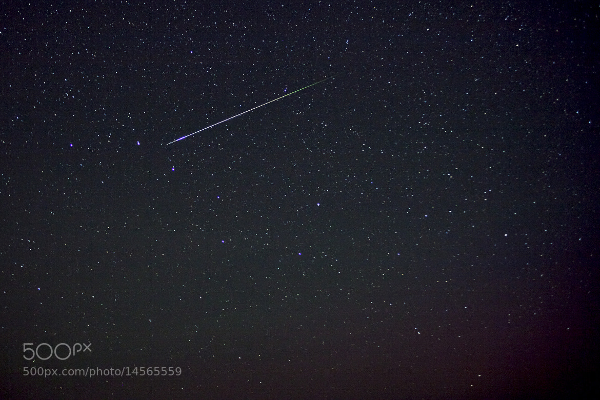 Photograph Meteor of Perseid by Ashley Williams on 500px