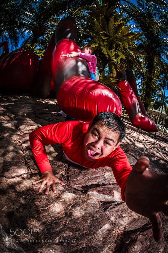 Photograph help..Big ant by Chaiyong Kokanutaporn on 500px