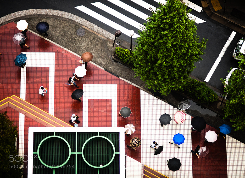 Photograph Intersection   Tokyo by Navid Baraty on 500px