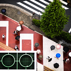 Travel Photography: Intersection | Tokyo by Navid Baraty
