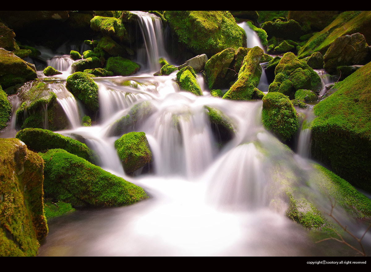 Photograph The 'Mineral Water' by Hyunsoo Na on 500px