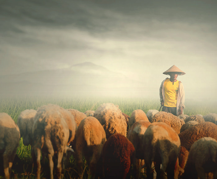 Photograph ngangon by Teuku Jody  Zulkarnaen on 500px