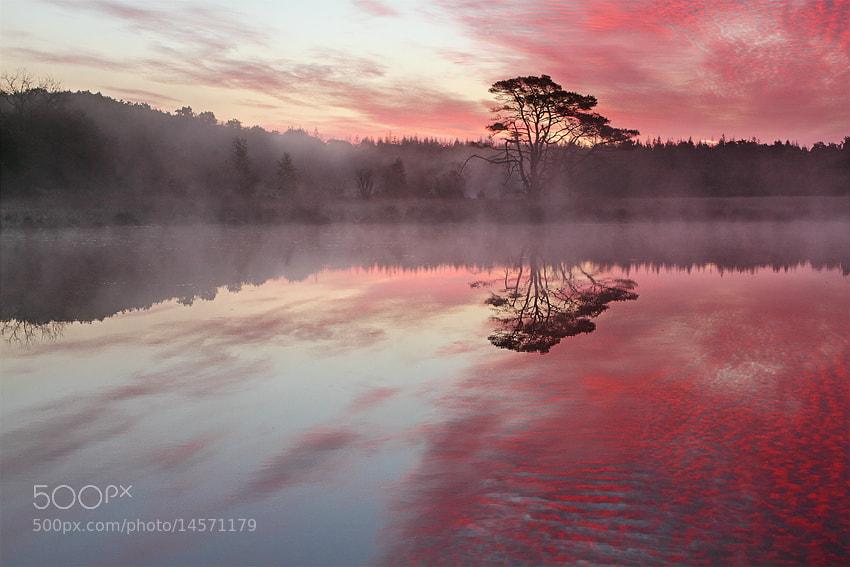 Photograph Color shift by Johannes van Donge on 500px