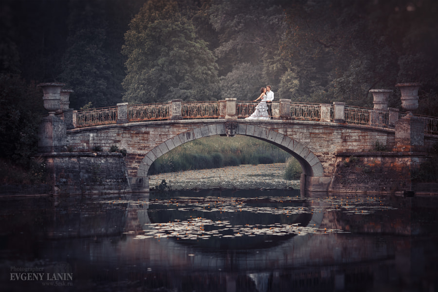 Newlyweds on the bridge by Evgeny Lanin on 500px.com