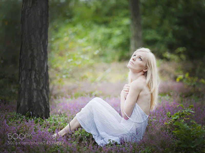 Photograph In the heather by Marta Łeske-Bogaczyk on 500px