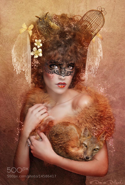 Photograph Fox Doll by Desirée Delgado on 500px