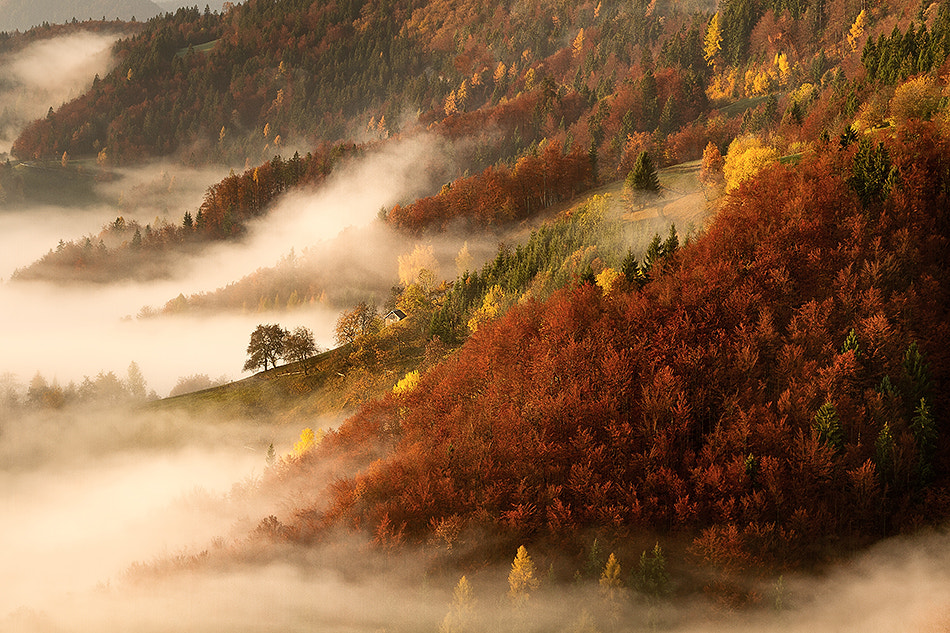 Photograph above the fog by Bor Rojnik on 500px