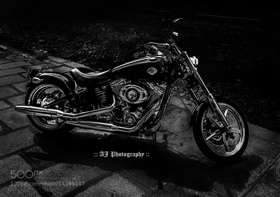 Photograph Majestic Harley by AJ  Photography on 500px